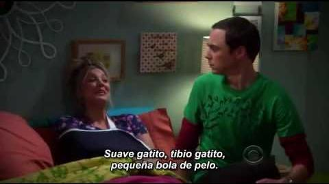 Soft_kitty_Suave_Gatito_SUBTÍTULOS_ESPAÑOL_-_Sheldon_&_Penny._Dúo