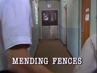 Mending Fences