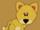 Lion (Safari)