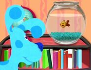 Blue and Her Goldfish