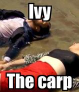 Ivy the carp meme