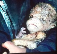 Infant Creatures