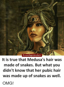 Fb-com-legendaryfacts-it-is-true-that-medusas-hair-was-made-of-23474658.png
