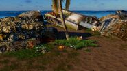 TC2 Plane Island 1