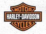 Harley-Davidson Red Rock Run