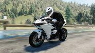Kawasaki Ninja H2 PERF