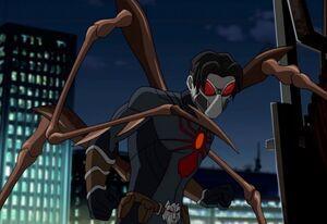 Wolf Spider.jpg