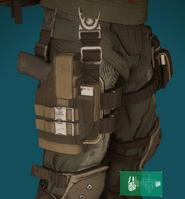 D3-FNC2 holster
