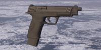 CustomPF45