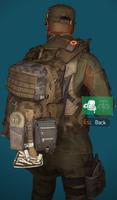 LS bag