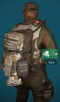 LS2 bag