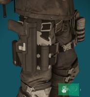 Striker holster