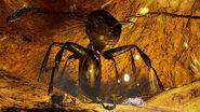 Queen Ant 1