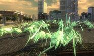 Light Green ants