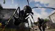 Storm Ant 1.jpg