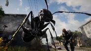 Storm Ant 1