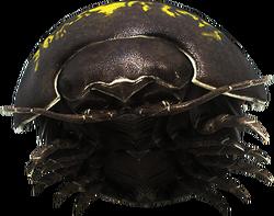 Species Gamma Render.png
