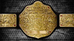 The World Heavyweight Championship's current design