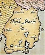 Blackmarsh1