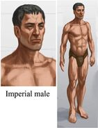 Imperial Male