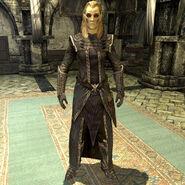 Skyrim – Elenwen