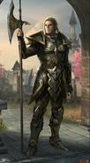 Legends – vznešený elf muž