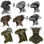 Argonian Faces
