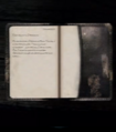 Journal 2.png