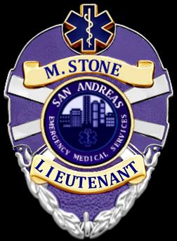 StoneSAEMS.png
