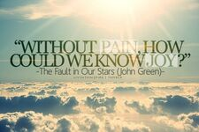 Without Pain how Could we know Joy