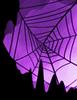 Nadircobweb