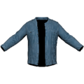 Blue Jacket.png