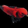 RedBirdFarket.png