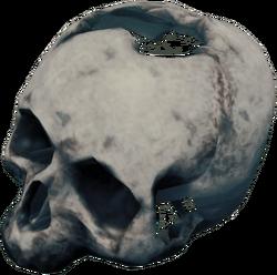 SkullFarket.png