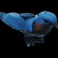 BlueBirdFarket.png
