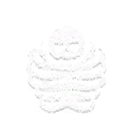 GameIcon-Bone Armour.png