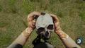 Skull(Held).png