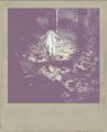 KeyCard3 Polaroid.png