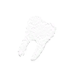 GameIcon-Tooth.png