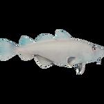 CaveFishFarket.png