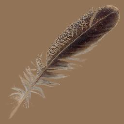画像をダウンロード Feather Pen Aikondoso