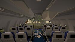 Plane-the-forest-1-0-dirty (2).jpg