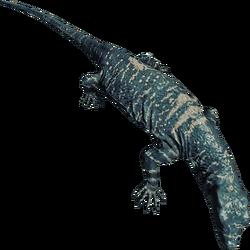 LizardFarket.png