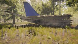 Plane-the-forest-1-0-dirty (12).jpg