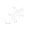 GameIcon-Lizard.png