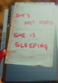 Notdeadsleepingnotesection.png