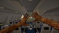 Plane-the-forest-1-0-dirty (1).jpg
