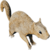 IconSquirrel.png