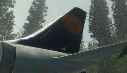 Lufthansa tail plane.jpg