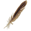 IconFeather.png